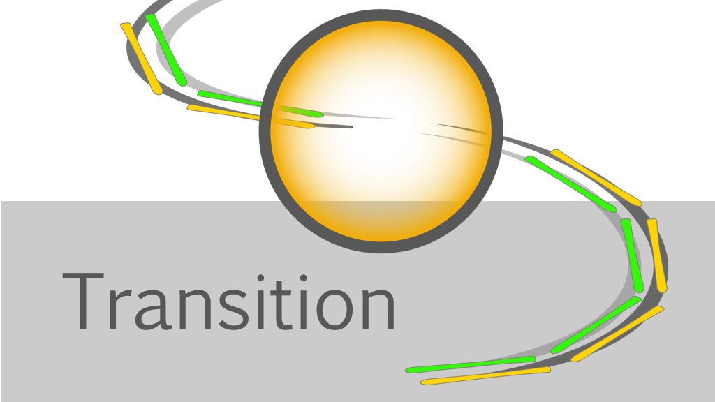 Turn Phases - Transition